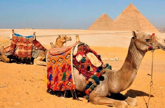 Cairo Tours From El Gouna