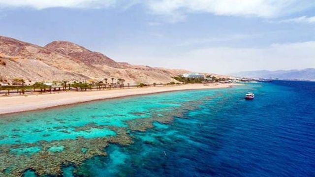 Half day snorkeling to sharm el luli