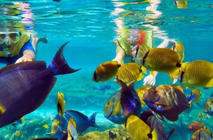 Makadi Snorkeling tour and excursions