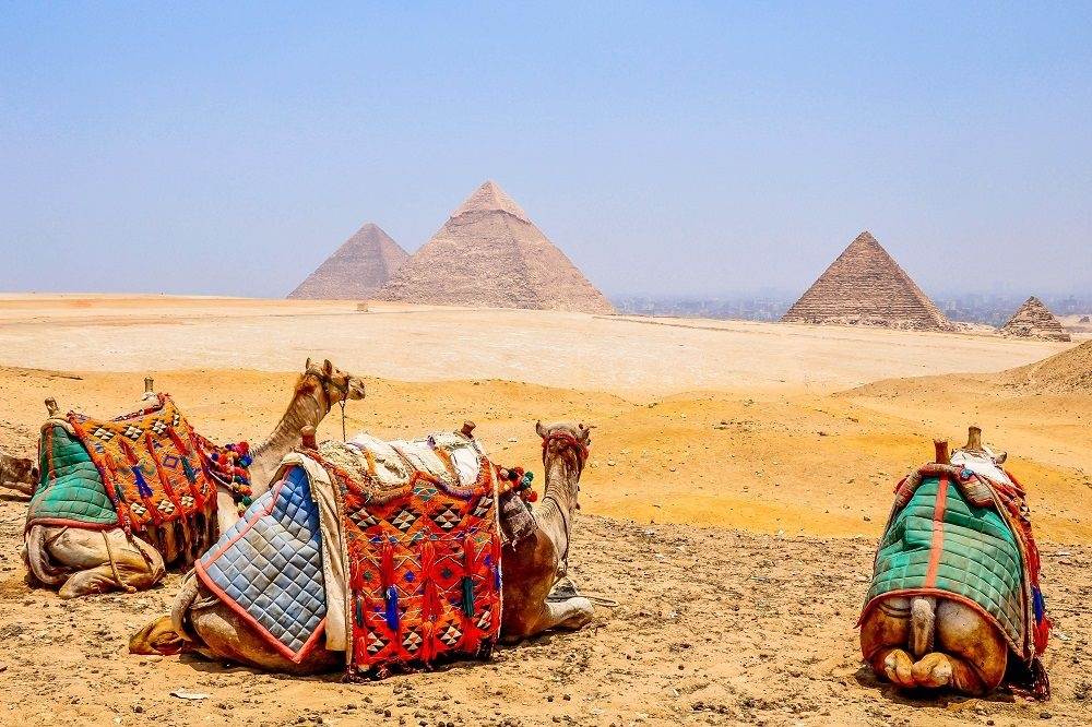 Overnight trip to Cairo from El Quseir by flight