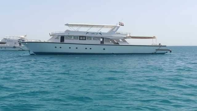 Private snorkeling boat Trip to dolphin house from Hurghada