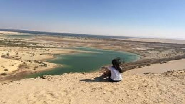 Wadi Al Hitan valley of whales day Trip from Cairo