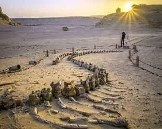 White desert trip from Cairo