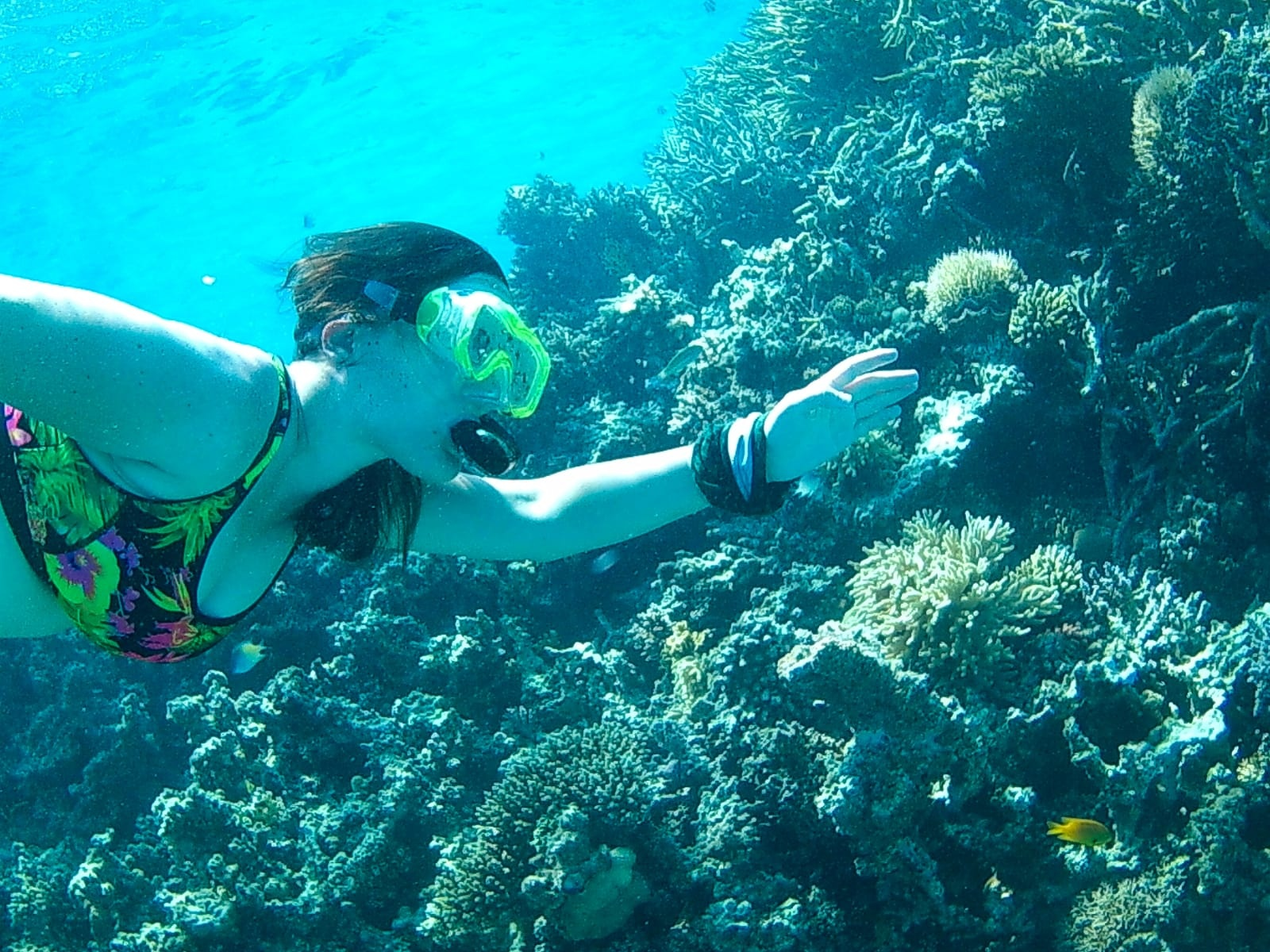 Snorkeling Excursions from Sahl Hasheesh